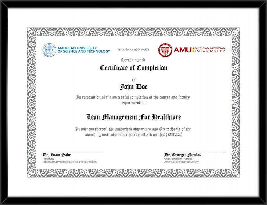 Lean Management For Healthcare Course Amu